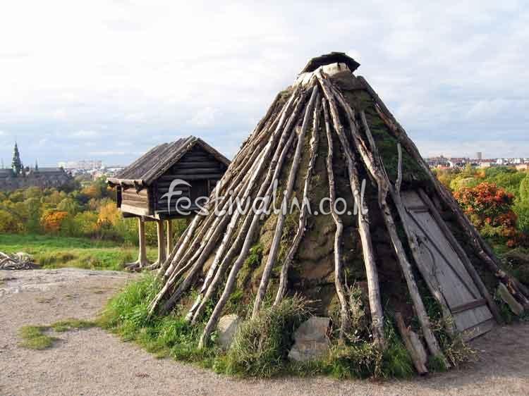 בית כפרי שוודי מסורתי עתיק - צילום באדיבות: © CarniFest Online