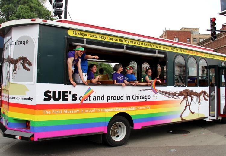 פסטיבל ומצעד הגאווה בשיקגו - תילום: http://chicago.gopride.com/
