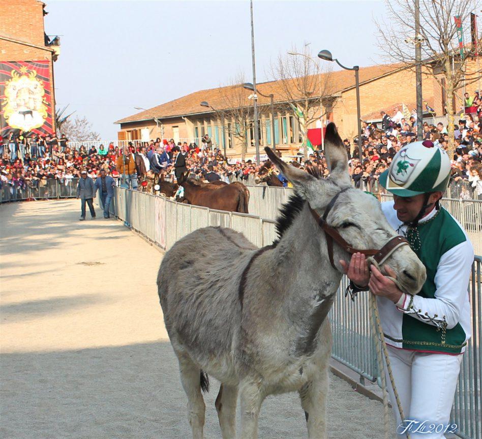 פאליו (מירוץ) החמורים בטוריטה די סיינה - צילום באדיבות:  Associazione Sagra San Giuseppe