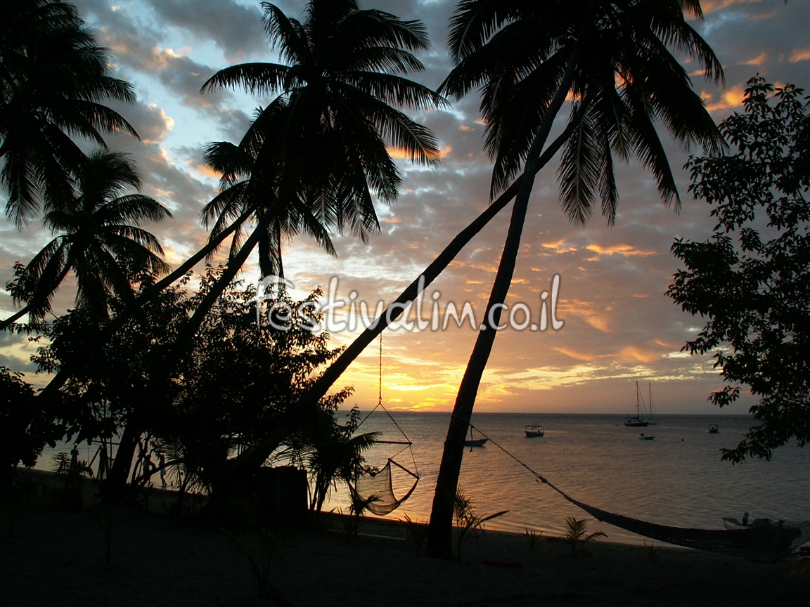 חוף ים ב איי פיג'י - צילום באדיבות: © CarniFest Online