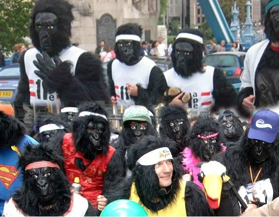 מירוץ הגורילה בלונדון - צילום: www.greatgorillarun.org
