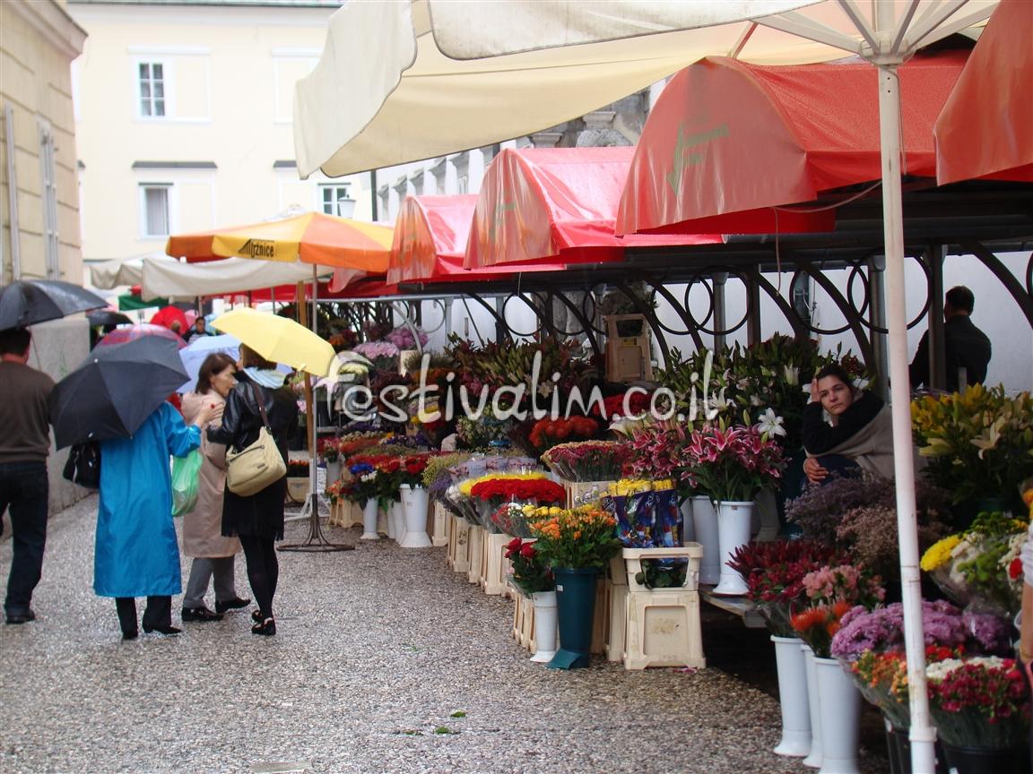 בשוק המרכזי של ליובליאנה - צילום באדיבות: © CarniFest Online