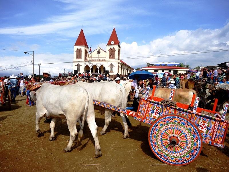 יום נהגי השוורים בקוסטה ריקה - צילום:  universal-edu.com