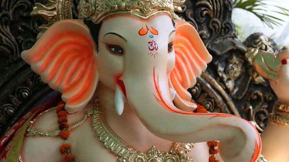 צילום: Pashminu Mansukhani from Pixabay