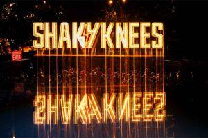 צילום: www.shakykneesfestival.com